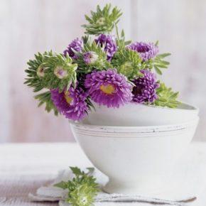 Оригинально: цветы в чашках