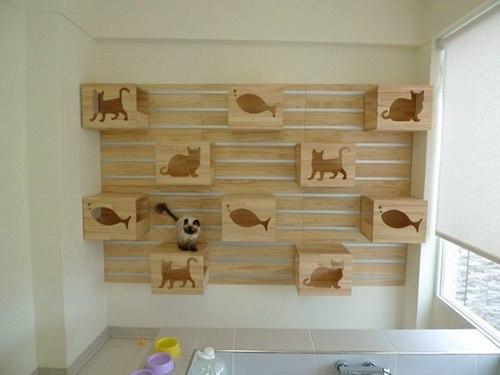 идеи для животных