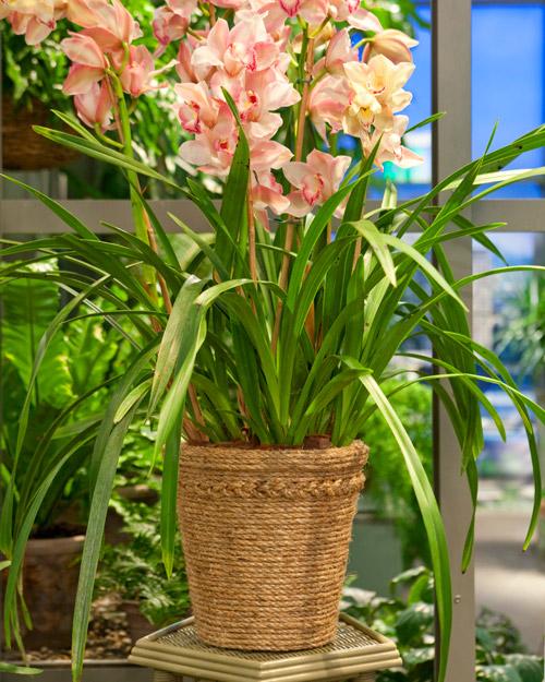 Поделки цветы для вазы своими руками
