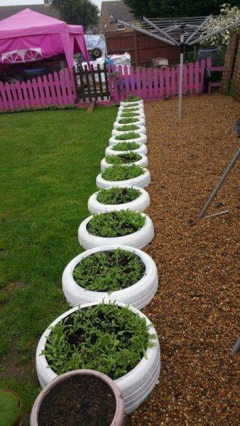 Flower beds of tires photo 11
