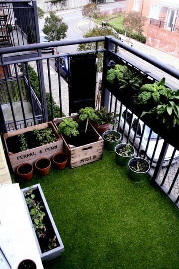 Огород на балконе фото 01