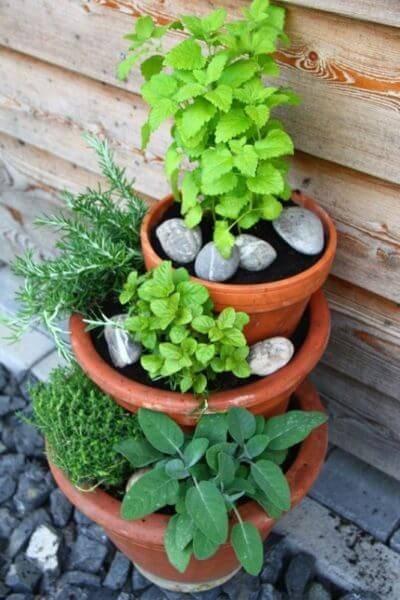 Огород на балконе фото 10