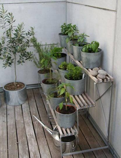 Огород на балконе фото 13