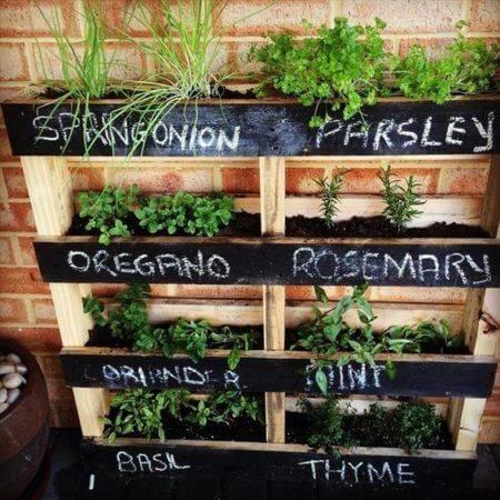 Огород на балконе фото 22