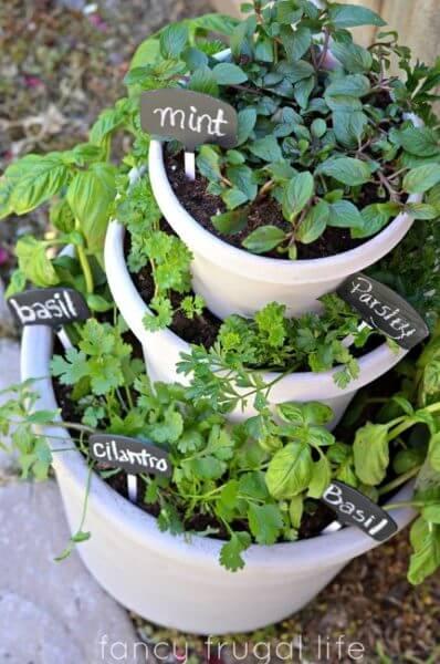 Огород на балконе фото 29