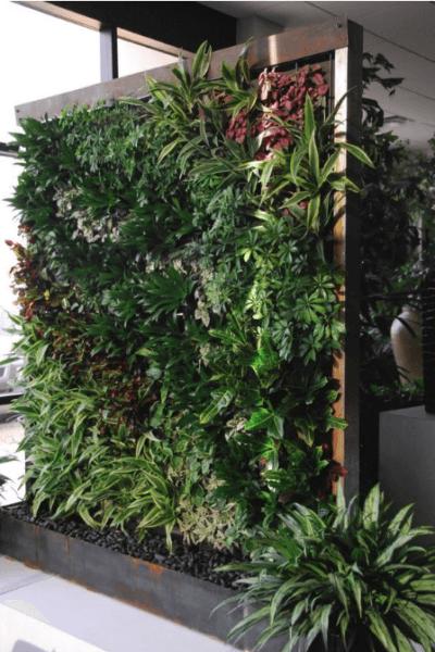 Vertical gardening photo 3
