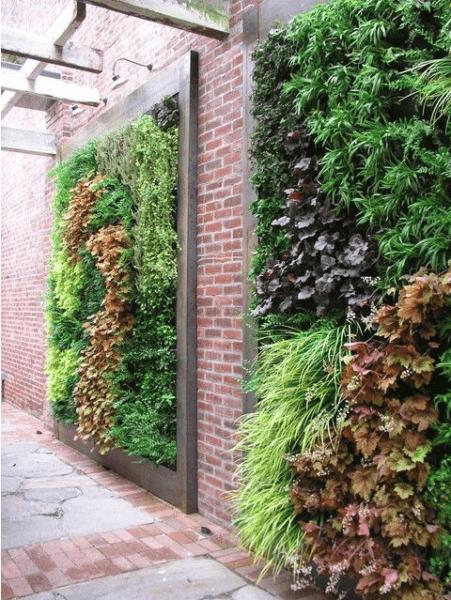 Vertical gardening photo 4