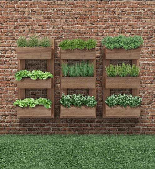 Vertical gardening photo 7