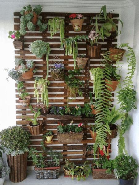 Vertical gardening photo 8