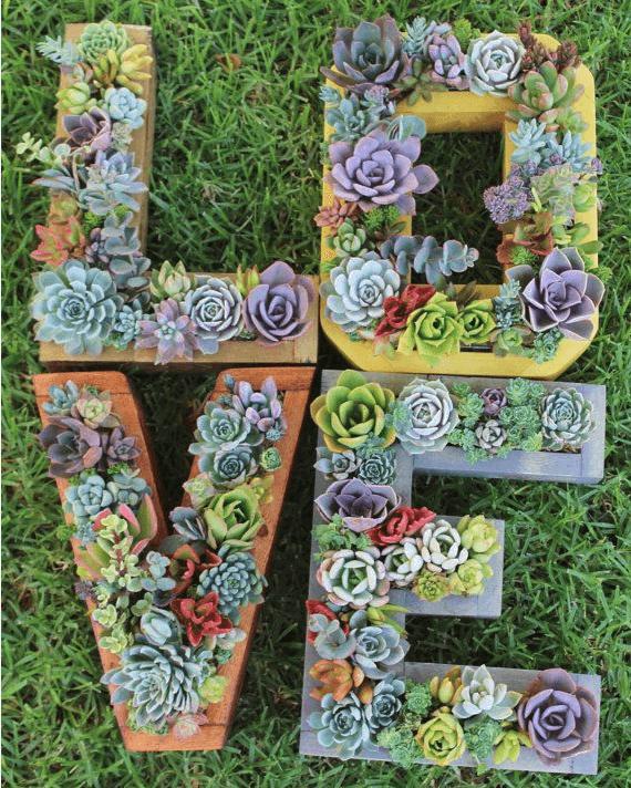 Vertical gardening photo 15