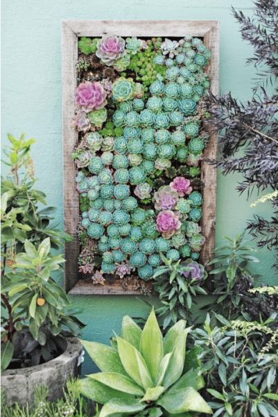 Vertical gardening photo 16
