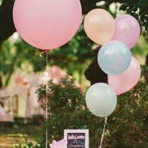 Детский день рождения свинка Пеппа фото 212