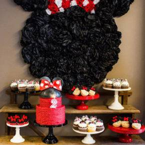 children's birthday 5 years old mini mouse photo 147