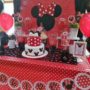 children's birthday 5 years old mini mouse photo 144
