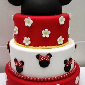 children's birthday 5 years old mini mouse photo 137