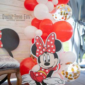 children's birthday 5 years old mini mouse photo 95