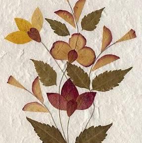 Осенние поделки из природного материала фото 72