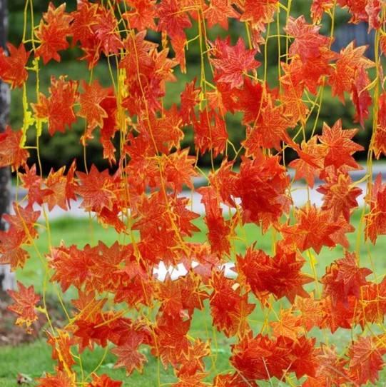 Осенняя гирлянда фото 4