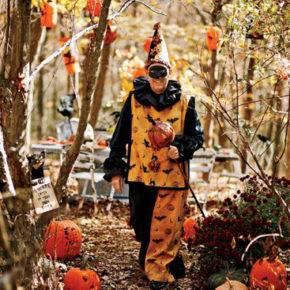 образ клоуна на хэллоуин фото 009