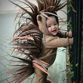 костюм для мальчика на новый год дикобраз фото 089