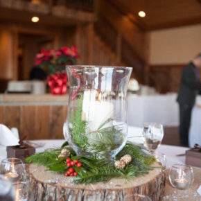 зимнее оформление свадьбы фото 11