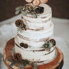 зимняя свадьба торт фото 46