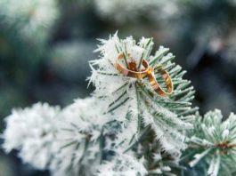 свадебная фотосессия зимой фото 102